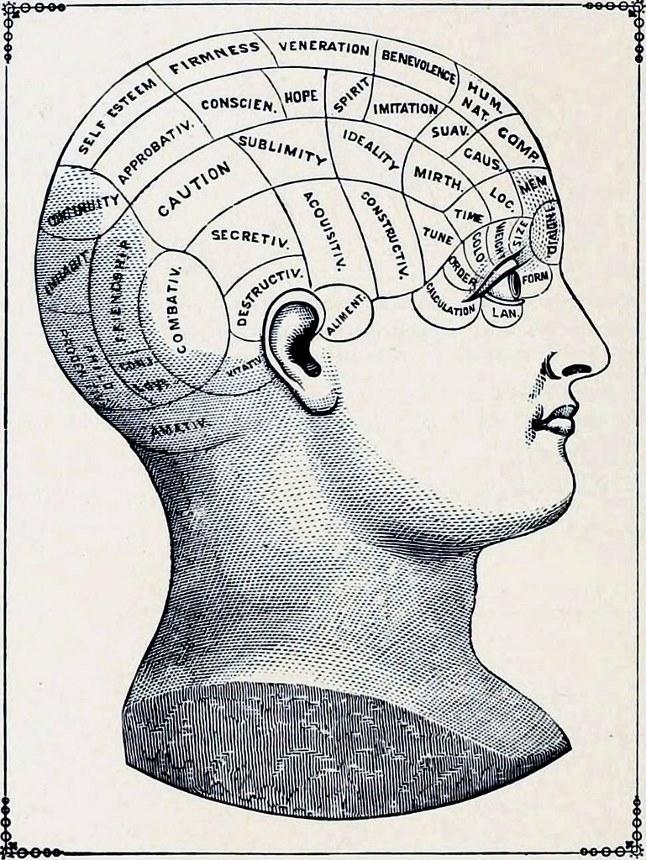 Ilustración antigua de una cabeza de frenología
